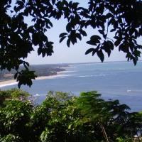 Meio Ambiente: Na Costa do Descobrimento