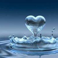 Meio Ambiente: A água nossa de cada dia