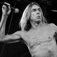 Iggy Pop: o avô do punk se aventura no pop francês