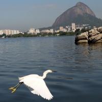 Lagoa Limpa rumo às Olimpíadas 2016. Será?